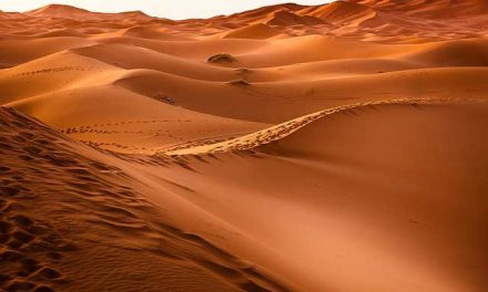 Kindness in the Desert- Ex 13:17-22