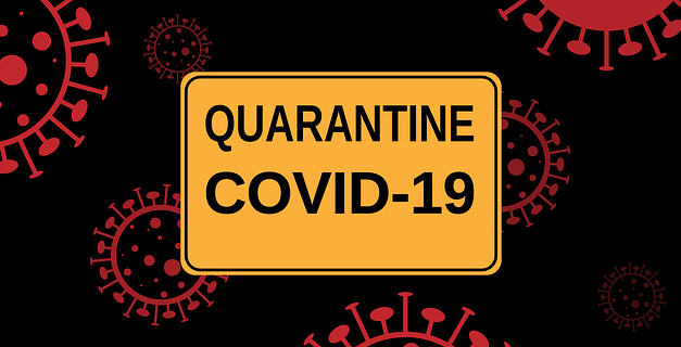 Coronavirus and Looking Beyond